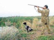 Полювання. Фото ataka54.ru