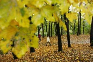 Погода в Украине на воскресенье, 19 сентября