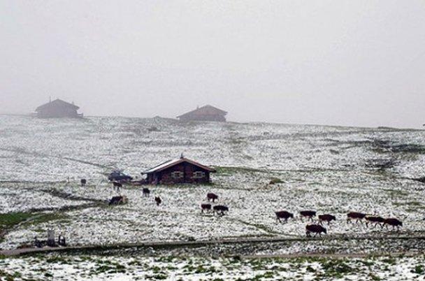 Сніг у Австрії_1