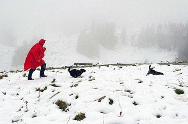 Сніг у Австрії_5