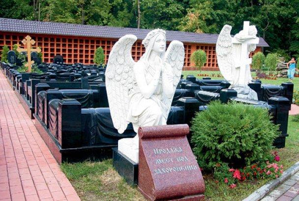 Жириновський купив собі могилу_3