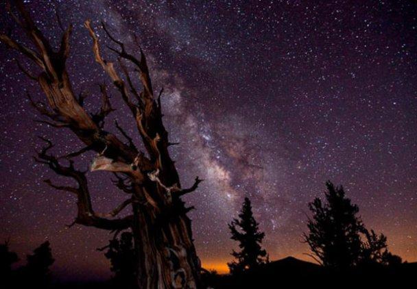 Найкращі астрономічні фотографії року_1