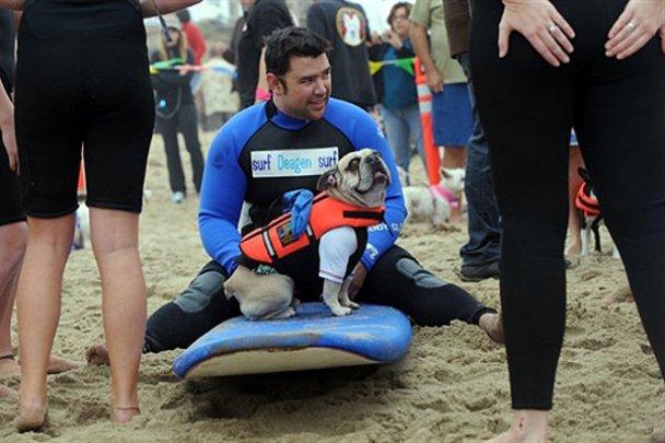 Чемпіонат з собачого серфінгу_1