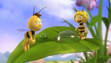 Бджілка Майя