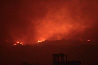 Пожежа вигнала зі звалища під Москвою полчища тарганів