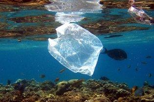 В Атлантичному океані загубили тонни сміття