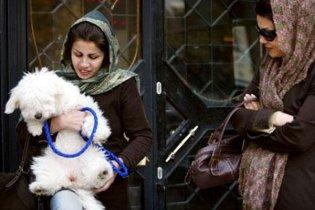 В Иране запретили рекламу животных