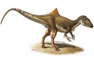 Горбатий динозавр змінив уявлення про час появи пір'я
