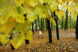 Прогноз погоды в Украине на понедельник, 18 октября
