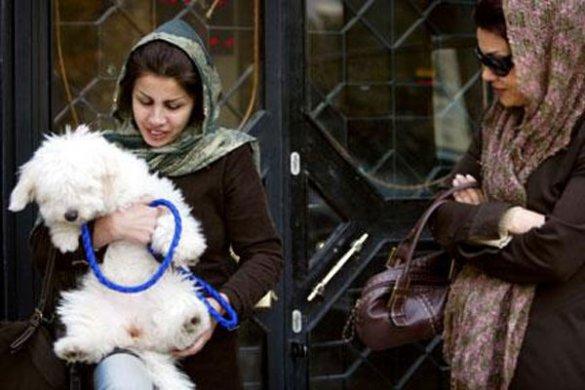 Жінки з собакою