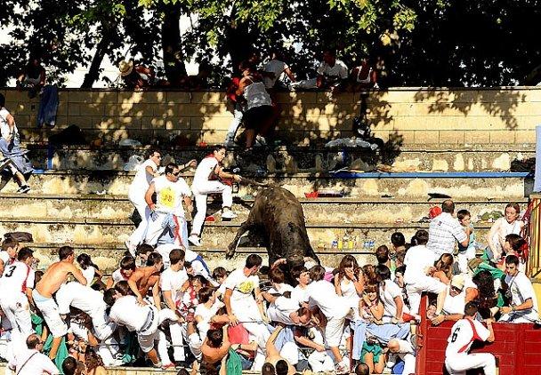 В Испании бык вырвался с арены и покалечил 30 человек