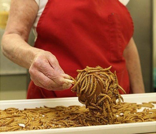 В США делают конфеты с червями и скорпионами
