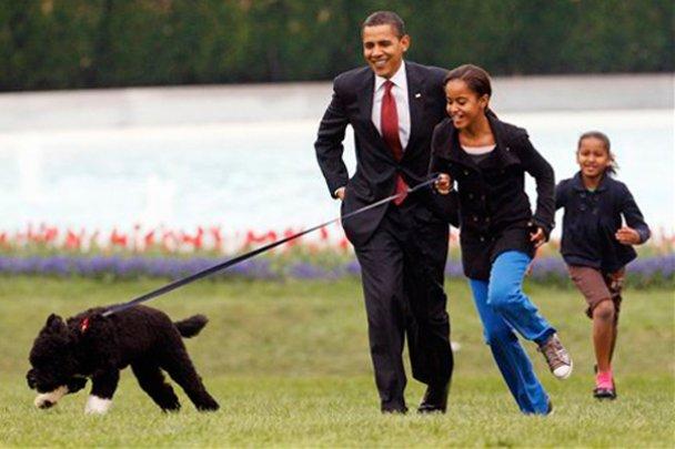 Мішель Обама: сивина чоловіка - доказ його відповідального ставлення до роботи