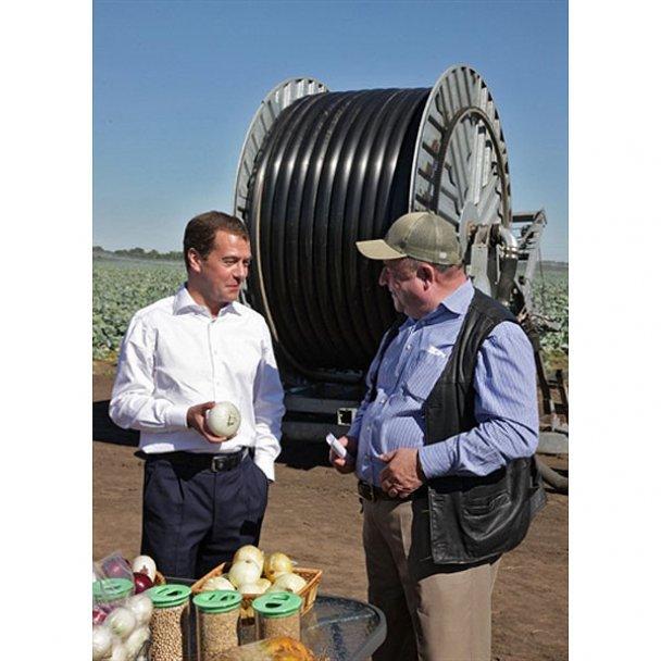 Президент Мєдвєдєв завів корів і випускатиме молоко
