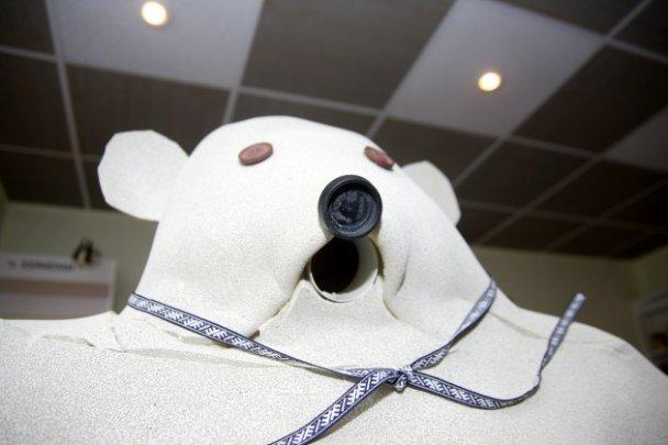 На посаду прем'єра Латвії висунули поролонового ведмедя