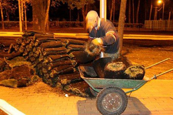 К приезду Януковича под Киевом ночью настилали новую траву