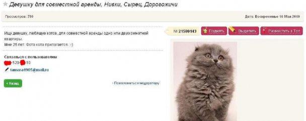 Топ-30 найсмішніших оголошень України