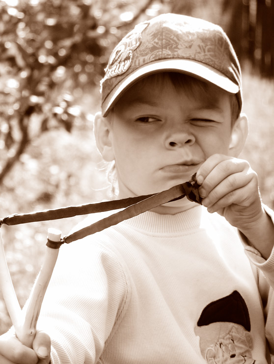 картинка малыш хулиган древесины ели